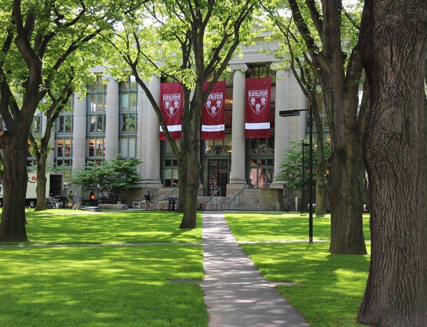 curso de verano en universidad Estados Unidos